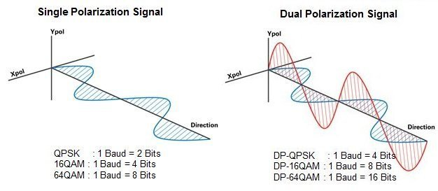 Single and Dual Polarization Signals